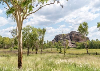 A rock outcropping in the Australian Outback