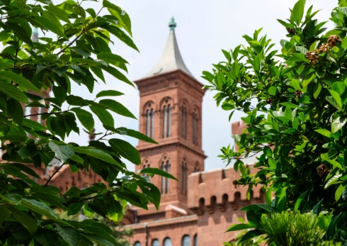 A view of Smithsonian Castle through the leaves