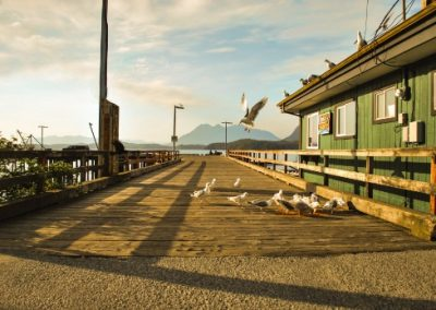 A dock with seagulls in Tofino, Canada